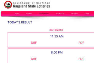 Nagaland Lottery result 8.11.2018 - 8:00 PM