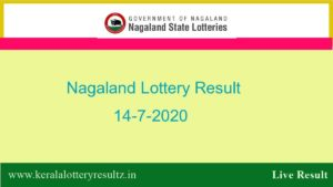 Nagaland State Lottery Sambad (8 PM) Result 14.7.2020 - Dear Parrot
