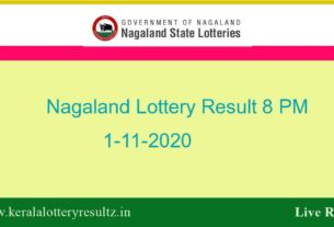 Nagaland State Lottery Sambad (8 PM) Result 1.11.2020 Live*, Night/Evening