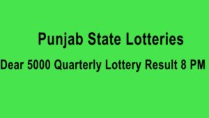 Punjab Dear 5000 Quarterly Result
